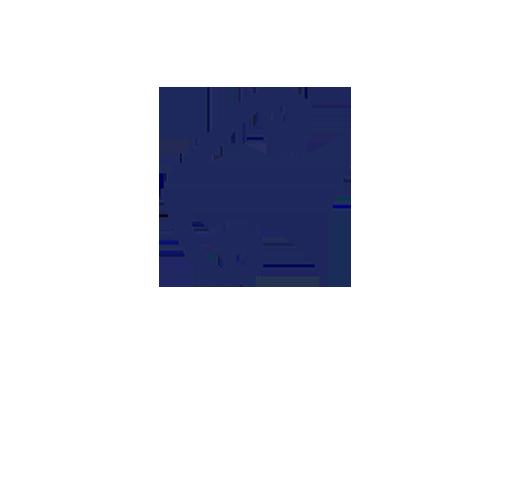 Air NewZealand