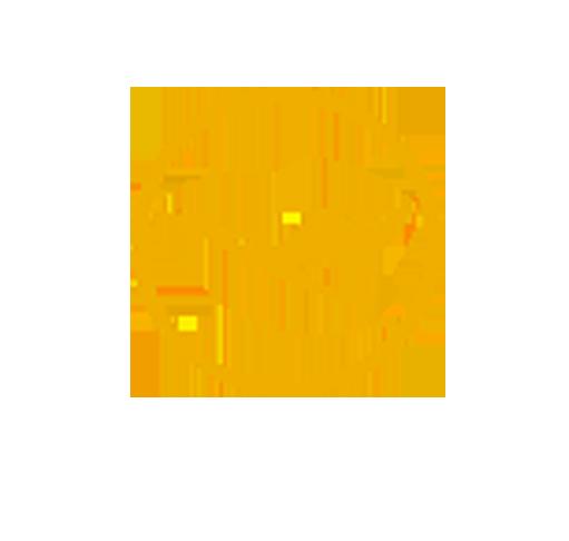 6Lufthansa Airlines